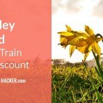 Esk Valley Railcard – 1/3 OFF Train Travel Discount on the Esk Valley Line